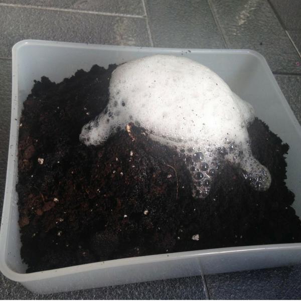 3 Experimentos con bicarbonato de sodio