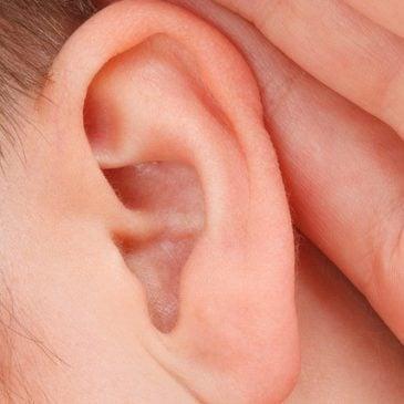 ¡Encuentra tu pareja! Dinámica y juego de discriminación auditiva