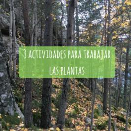 3 actividades para trabajar las plantas