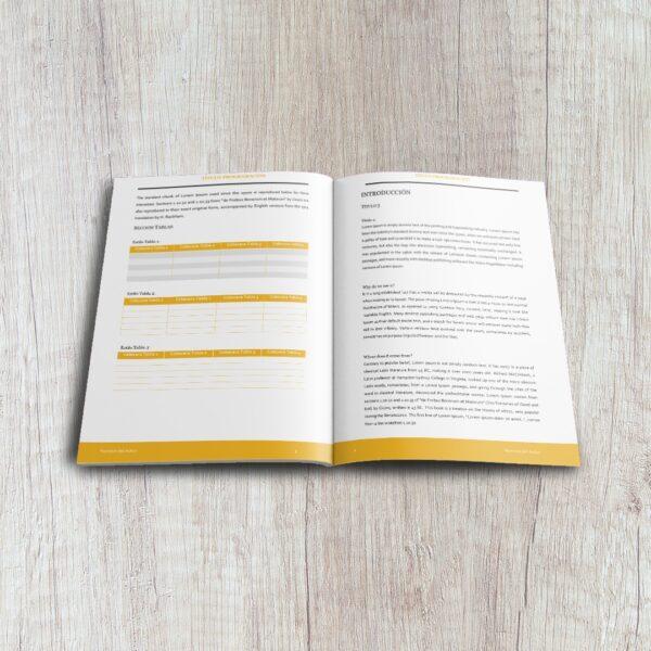 Plantillas Programacion Libro